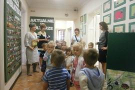 ciekawskie-misie-zwiedzaja-biblioteke_21