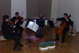 koncert-acoustic-quartet_12
