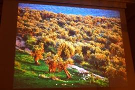 moja-ziemia-swieta-jaroslaw-kret_14