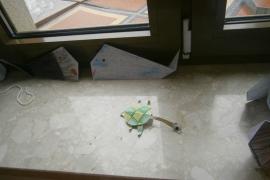w-morzu-i-na-ladzie-origami_45